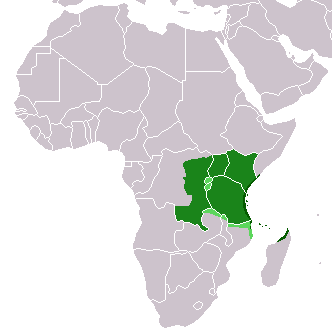 Swahili