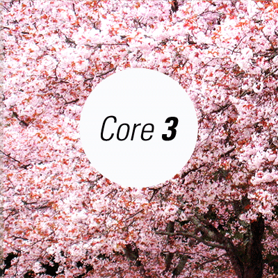 Core 1000 (part 3)